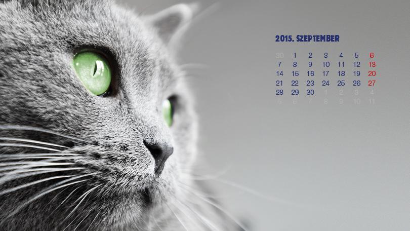 """Képtalálat a következőre: """"szeptember háttérkép 2015"""""""
