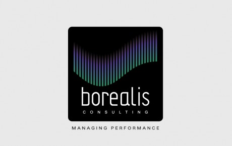 logo-design-radex-media-borealis