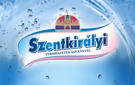 logo-design-radex-media-szentkiralyi 2
