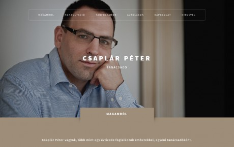radex-media-social-webdesign-csaplar-peter