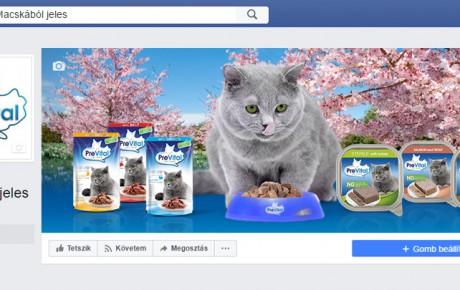 facebook-radex-media-social-prevital