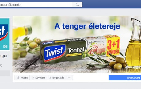 facebook-radex-media-social-twist